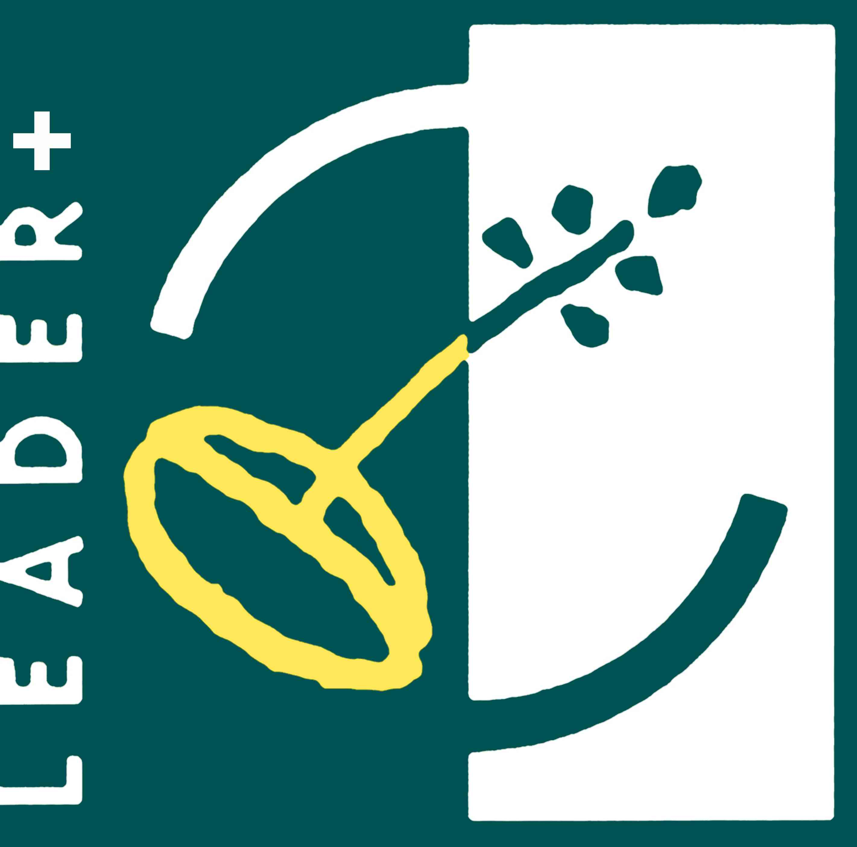 leader-plus-logo